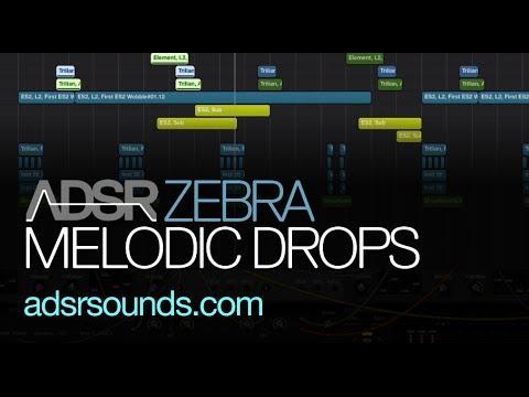 Design Melodic Drops With Zebra