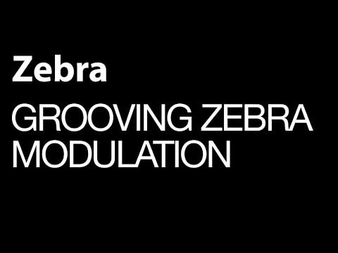 Get Grooving With The Zebra Modulation Sources