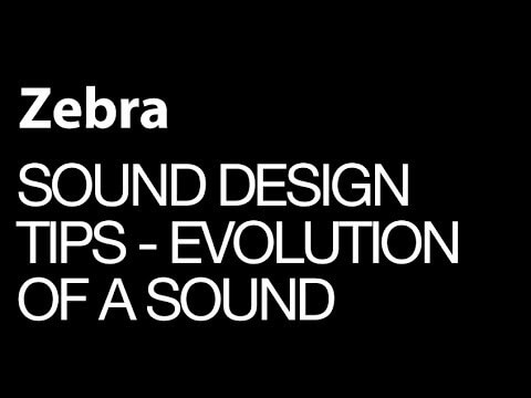 Zebra 2 - The Birth Of An Evolving Soundscape Patch