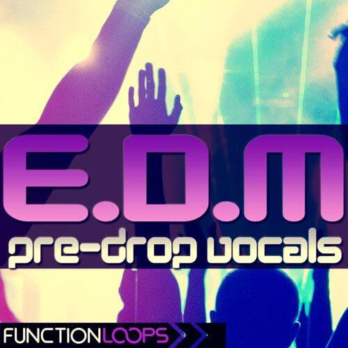 EDM Pre-Drop Vocals