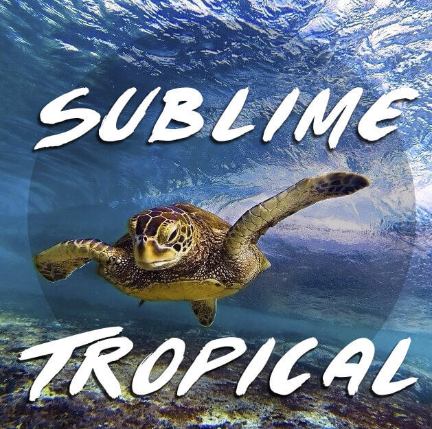 Sublime Tropical
