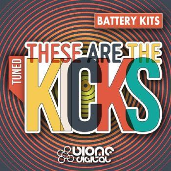 These Are The Kicks (Battery Kits)
