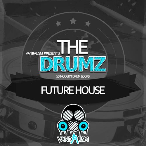 The Drumz: Future House