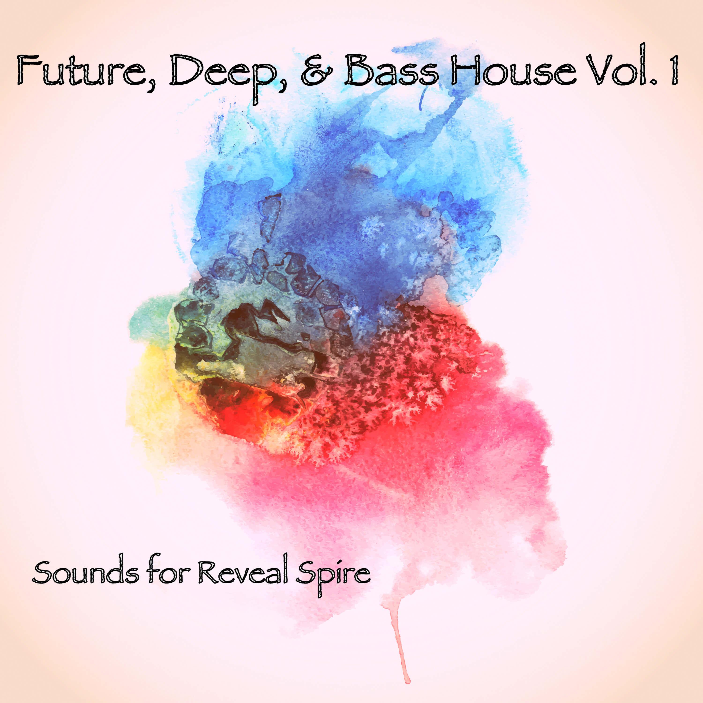 Future, Deep & Bass House Vol.1