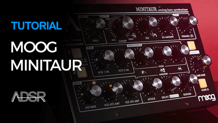 Working With Moog Minitaur