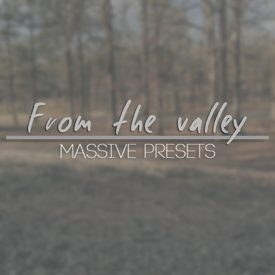 From the Valley Massive Presets