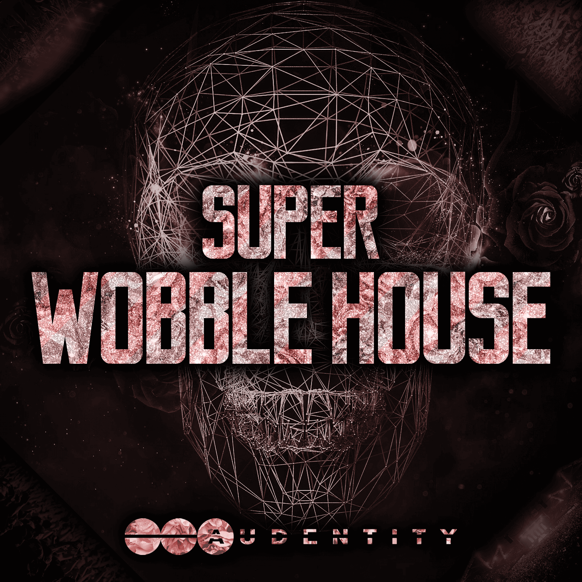 Audentity- Super Wobble House
