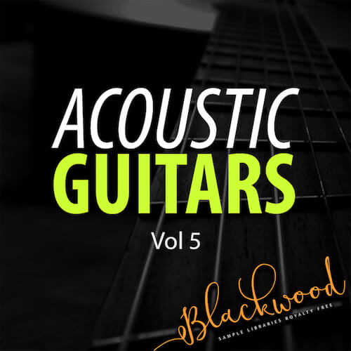 Acoustic Guitars 5