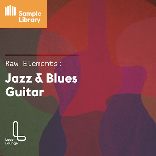 RAW ELEMENTS: JAZZ & BLUES GUITAR