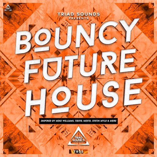 Bouncy Future House