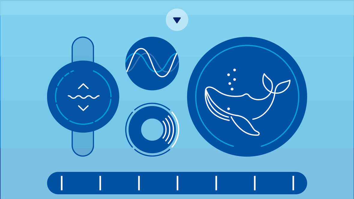 This Browser Synth Lets You Make Whale Sounds