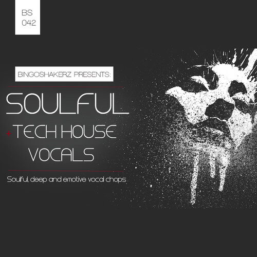 Soulful & Tech House Vocals