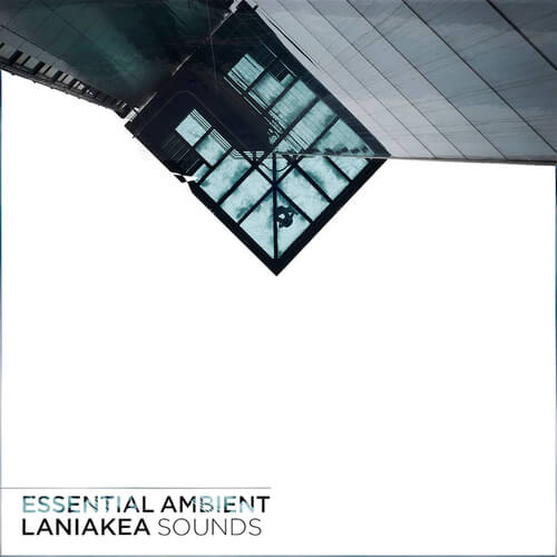 Essential Ambient