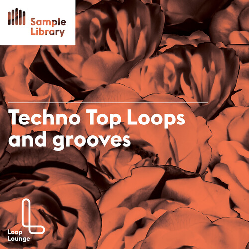 Techno Top Loops and Grooves