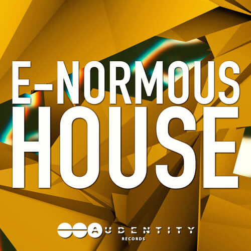 E-Normous House
