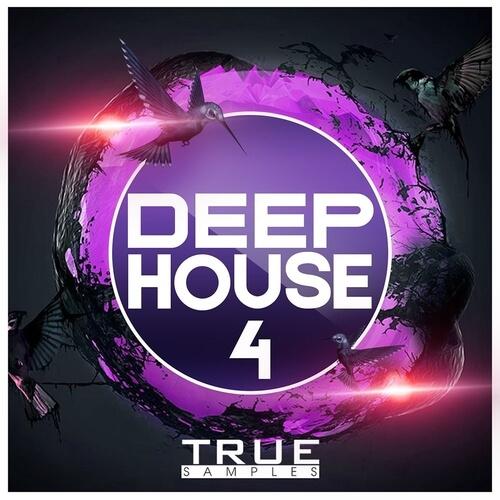 Deep House 4