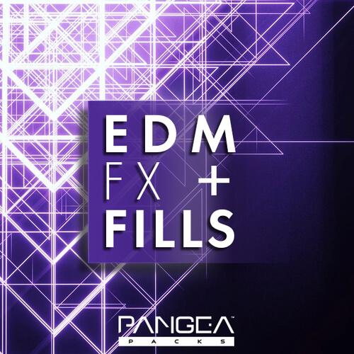 EDM FX & Fills