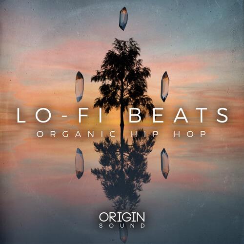 Lo-Fi Beats - Organic Hip Hop
