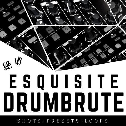 Esquisite DrumBrute