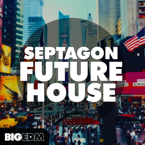SEPTAGON Future House