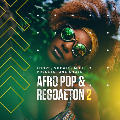 Afro Pop & Reggaeton 2