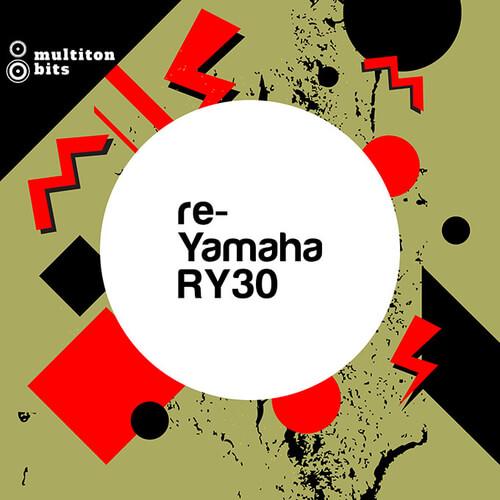 re-Yamaha RY30