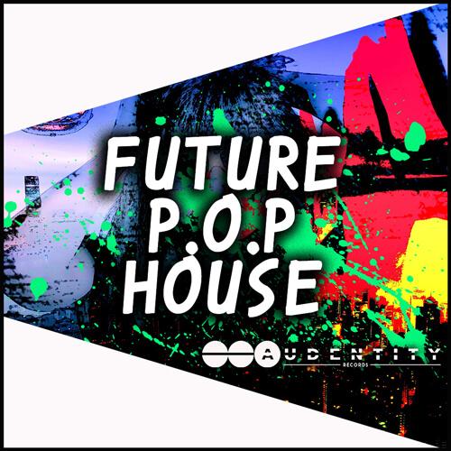 Future P.O.P House