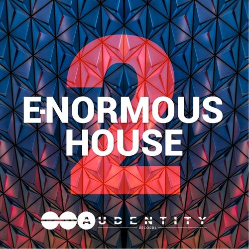 E-Normous House 2