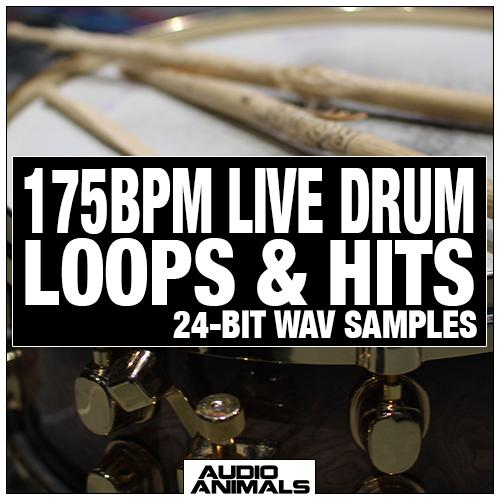 175 BPM Live Drum Loops & Hits