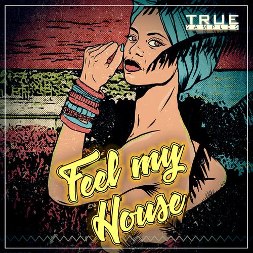 Feel My House