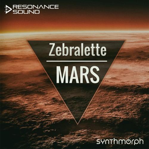 Synthmorph – Zebralette MARS