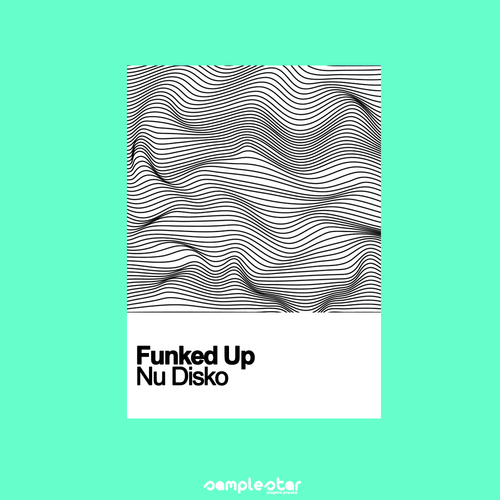 Funked Up Nu Disko
