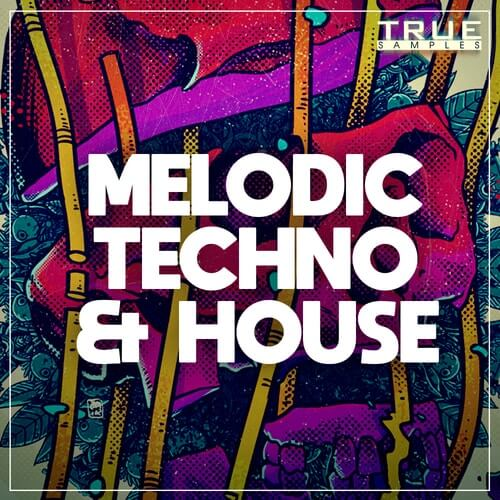 Melodic Techno & House