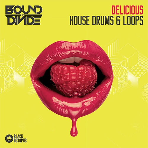 Delicious House Drums & Loops