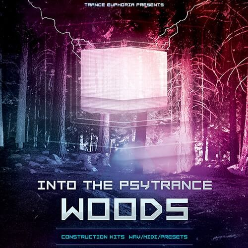 Into The Psytrance Woods