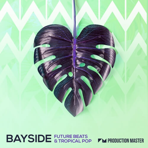 Bayside - Future Beats & Tropical Pop