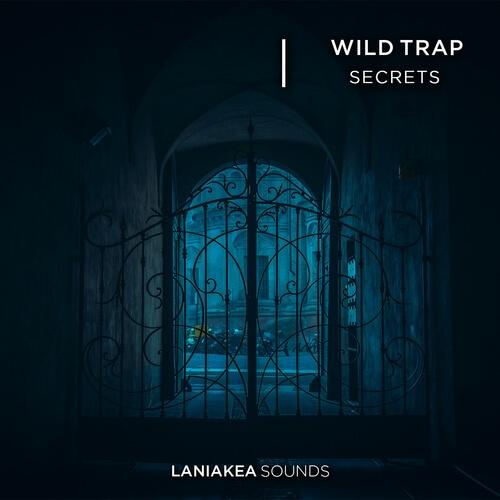 Wild Trap Secrets