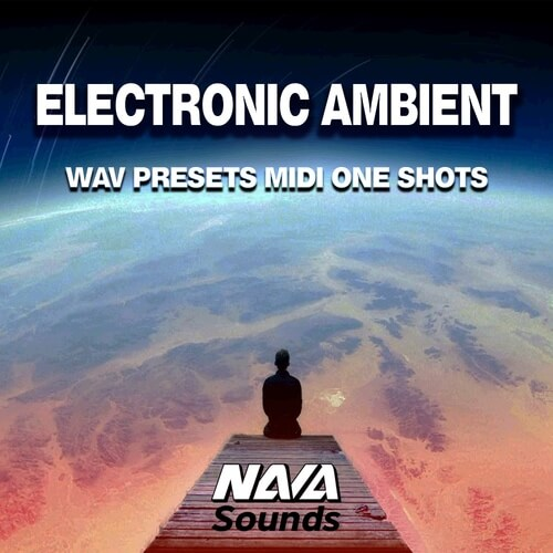 Electronic Ambient