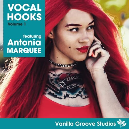 Vocal Hooks Vol.1