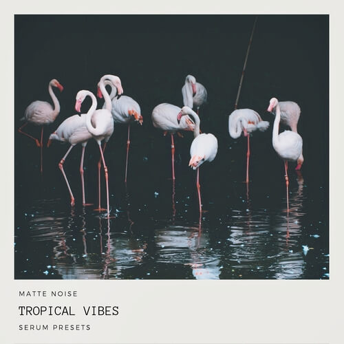 Tropical Vibes - Serum