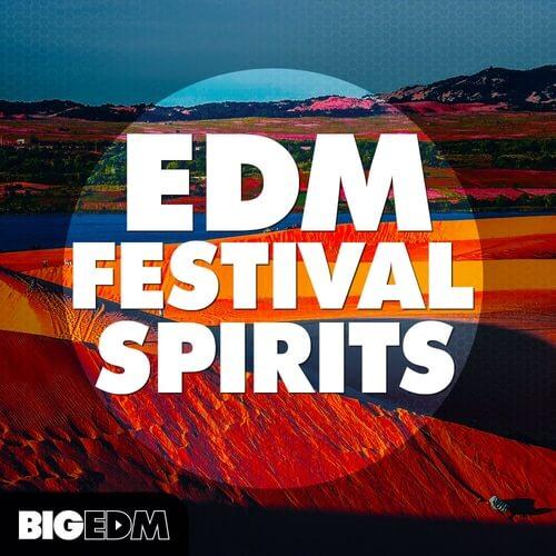 EDM Festival Spirits