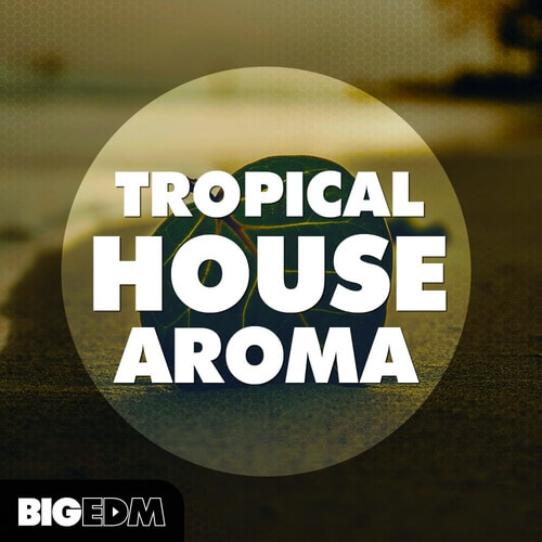 Tropical House Aroma