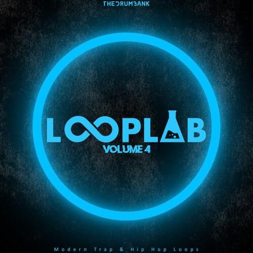 LoopLab 4