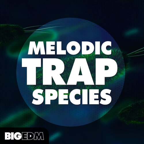 Melodic Trap Species