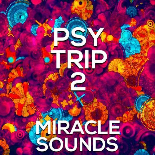 PSY Trip 2