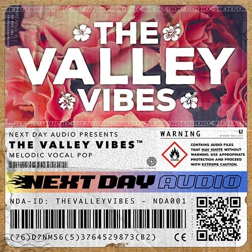 The Valley Vibes - Uplifting Vocal Anthems