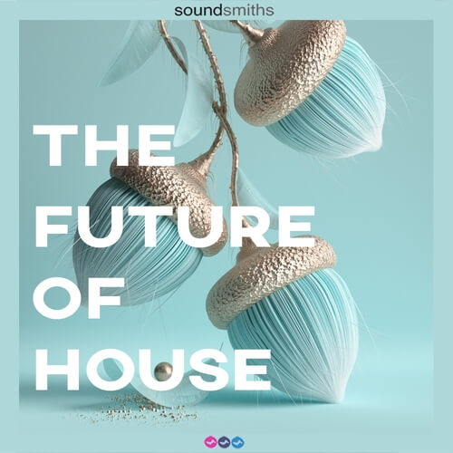 The Future Of House