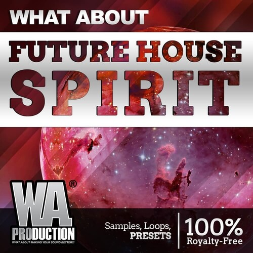What About: Future House Spirit