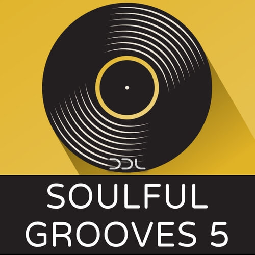Soulful Grooves 5
