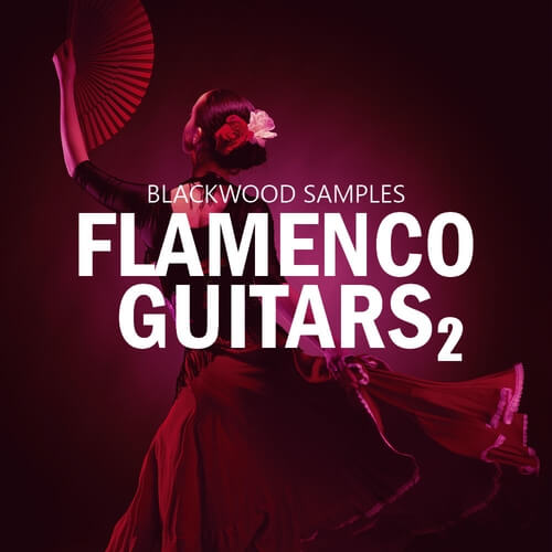 Flamenco Guitars 2